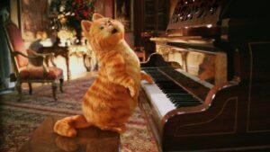 Кот, играющий на пианино, стал звездой интернета (видео)